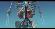 Robotic Partial Nephrectomy by Geoff Coughlin