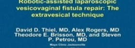 Robotic-Assisted Vesico-Vaginal Fistula Repair: The Extravesicle Technique